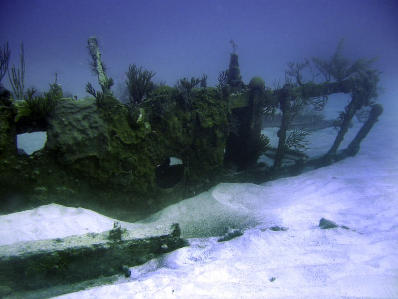 The Wreck of The Marie Celeste - Bow