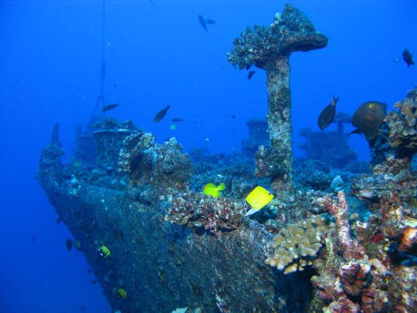 Mahi, formerly the USS Scrimmage AM297 - Mahi wreck. Oahu, HI