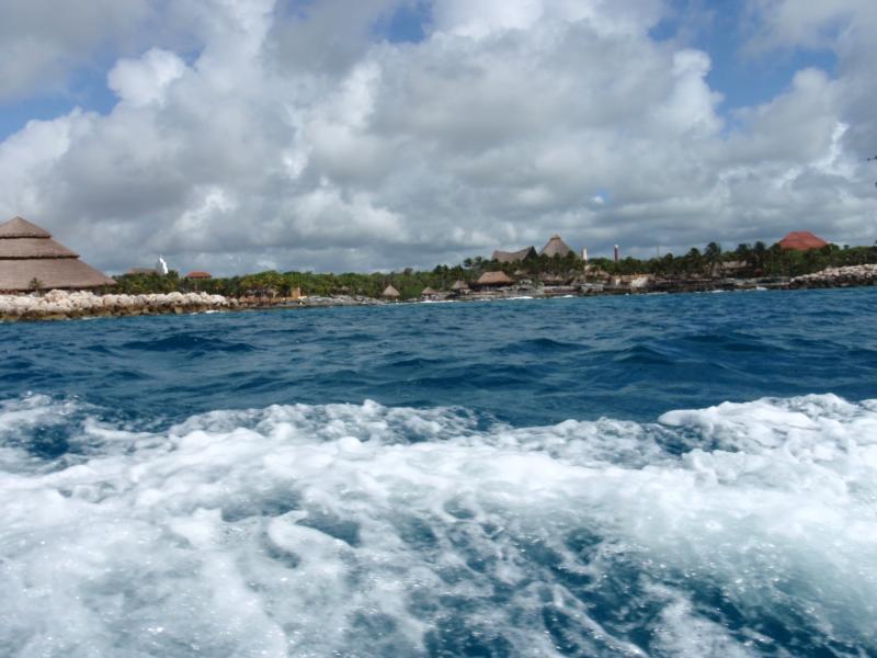 Barracuda Reef - Nice view