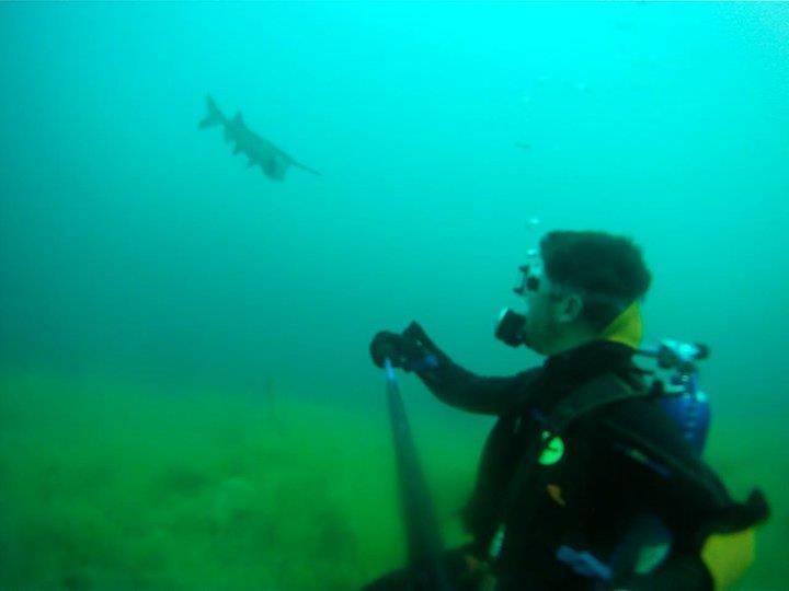 Loch Low-Minn Quarry - Paddle Fish or Sturgeon