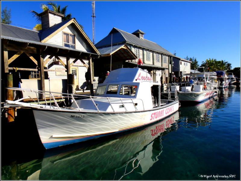 Stuart Cove's - Nassau - stuart cove's, bahamas
