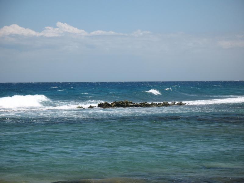 Baby Beach Reef - Baby Beach Reef, Aruba