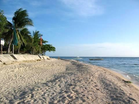 Balicasag Beach Resort, Bohol - by the beach