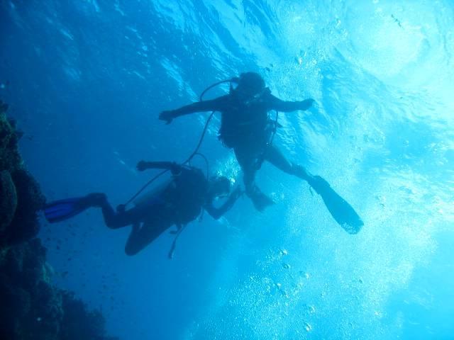 Balicasag Beach Resort, Bohol - let's go diving!