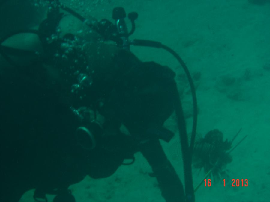 De Palm Slope - Master Diver...