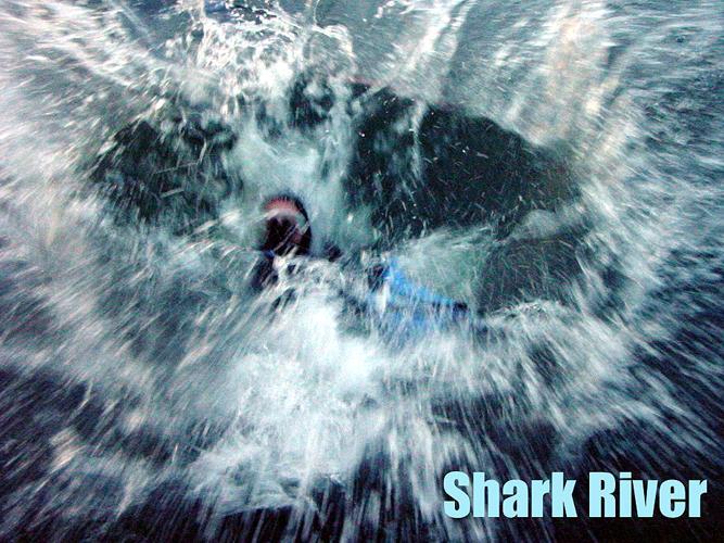 Shark River Inlet - Shark River NJ - Splash