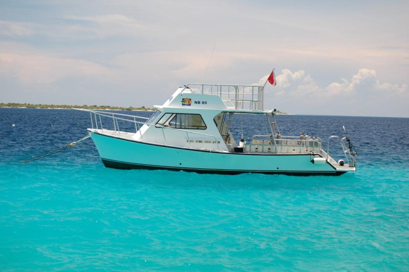 Bonaire - Buddy Dive Resort