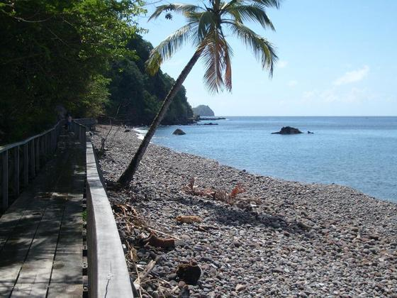 Champagne Reef - Beach at Champagne Reef in Dominica
