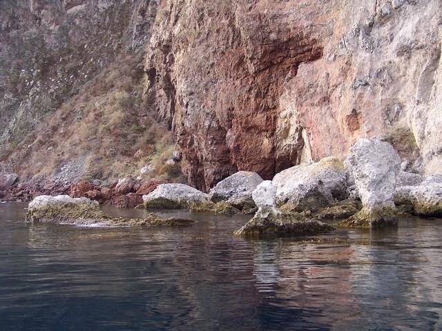 Sea Fan Grotto - Sea Fan Grotto