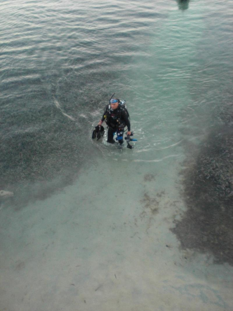 Cocoview Resort - Roatan Honduras - Shore diving