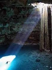 Cenotes The Sacred Waters of the Riviera Maya - Cenotes The Sacred Waters of the Riviera Maya