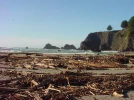 Navarro Beach - Mendocino Coast - Navarro Beach