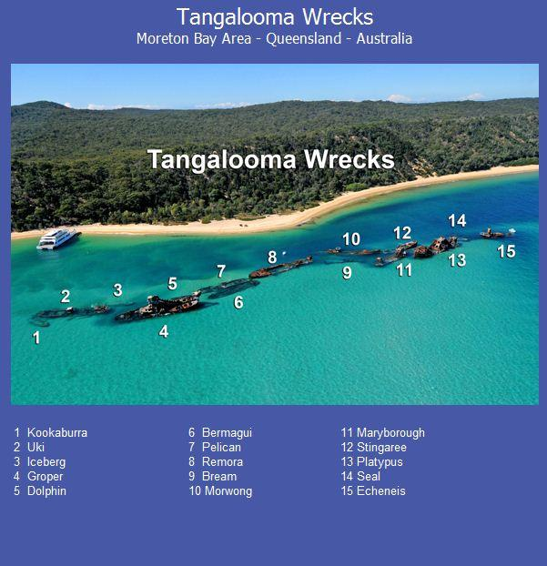 Tangalooma Wrecks - Tangalooma