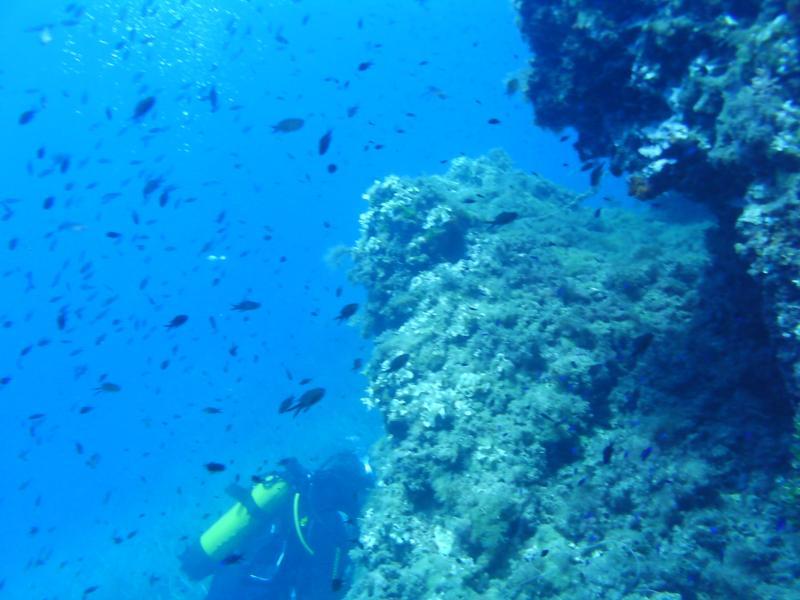La Azohia,Spain - La Azohia underwater