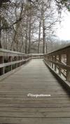 Morrison Springs - morrison springs