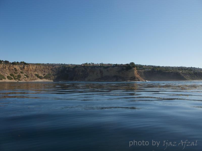Honeymoon Cove - View from Ocean