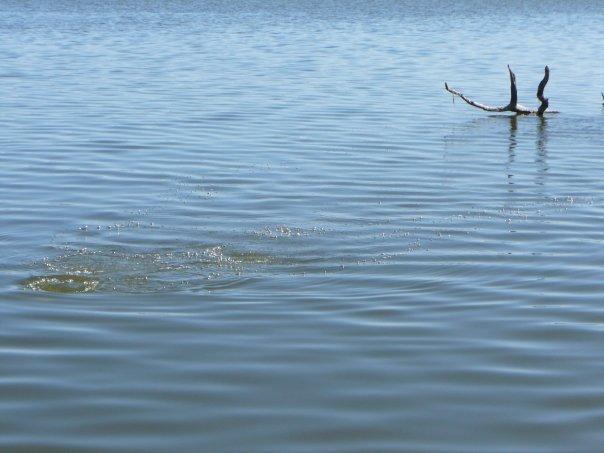 Lake Granbury - Granbury Lake