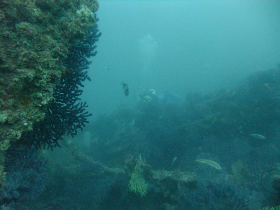 SS Rosslyn - 1, SS Rosslyn, Gibraltar