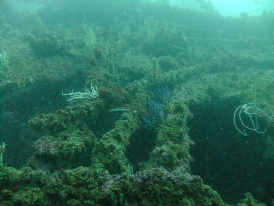 SS Rosslyn - 1 SS Rosslyn, Gibraltar