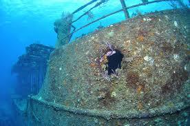 The Willaurie Wreck - The Willaurie Wreck