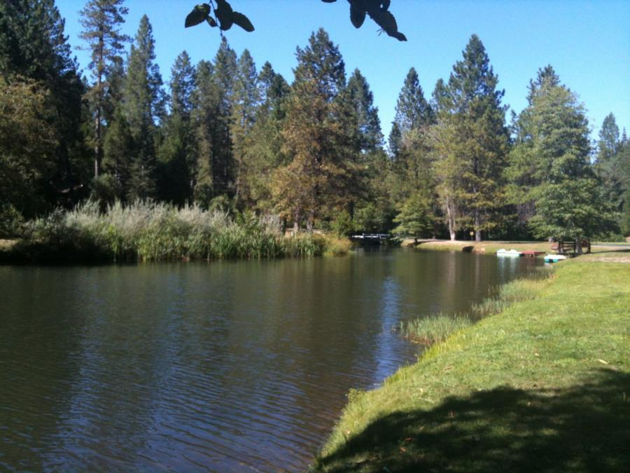 Lake Madrone - Photo uploaded by Smithsgold (image.jpg)