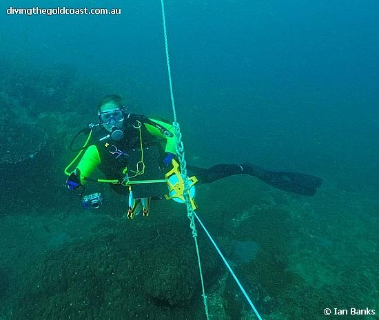 Shag Rock - Gemma Routledge at the start of the Reef Check transect line, Shag Rock Moreton Bay QLD Australia