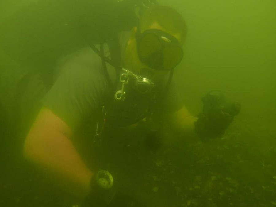 Ross's Landing - My Dive buddy