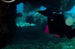 Lone Star Reef - Lone Star Reef