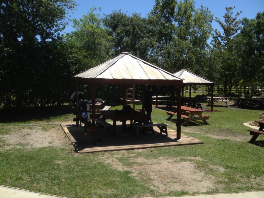 Devil's Den Springs (Devils Den) - Looking at the diver's picnic area