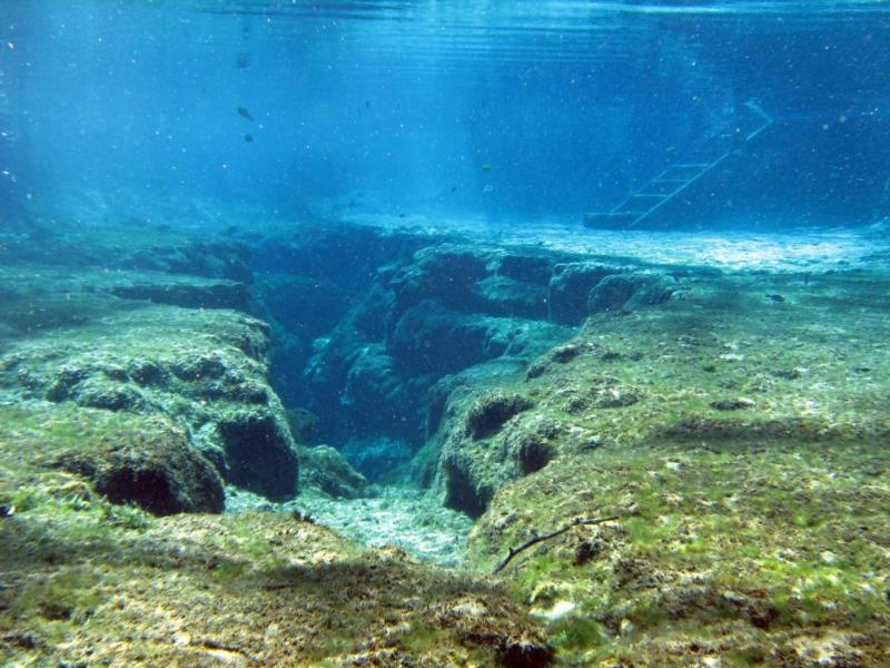 Ginnie Springs - coming up to the eye