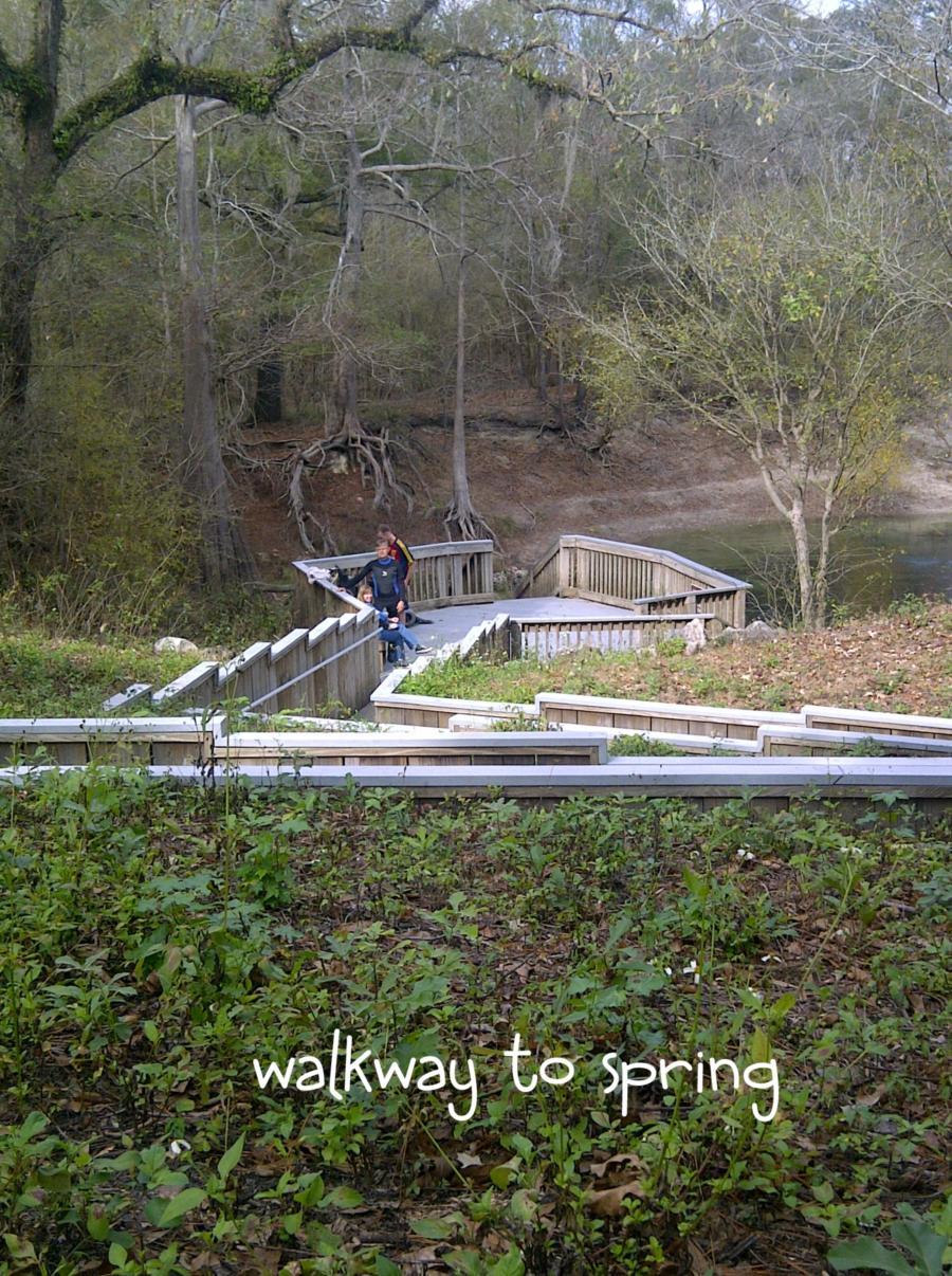Troy Spring aka Troy Springs State Park - Troy Springs boardwalk