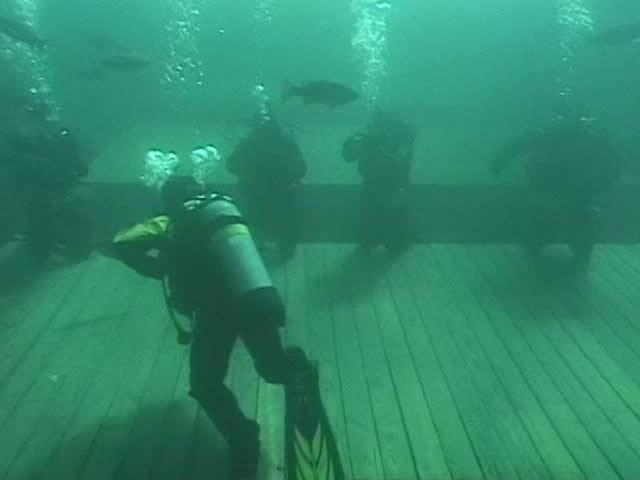 Gilboa Quarry - Underwater training platforms