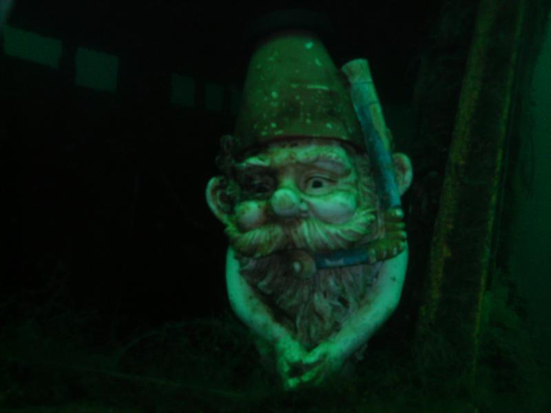 Gilboa Quarry - The Gilboa Gnome