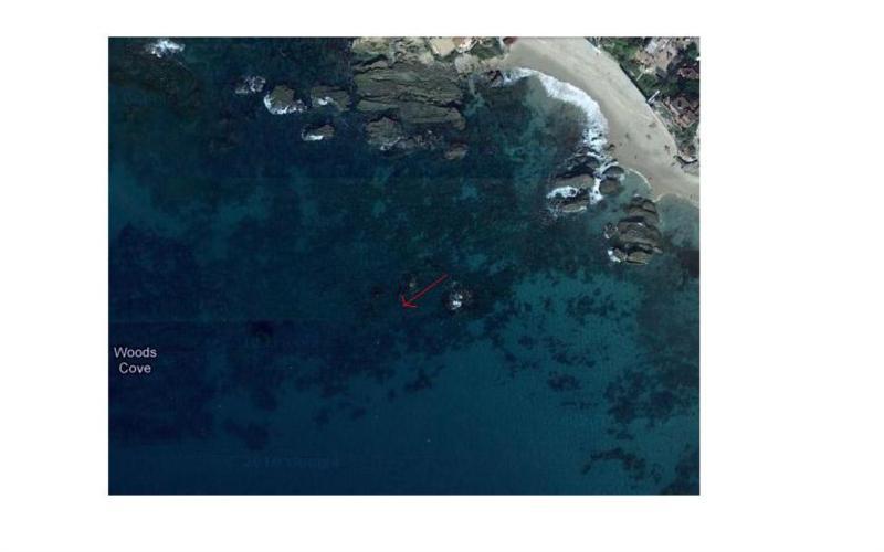 Wood Cove - Woods Cove Main Dive Area