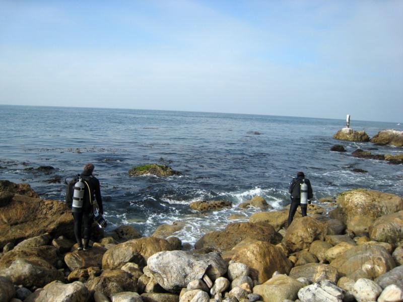Old Marineland - Old Marineland shore 2