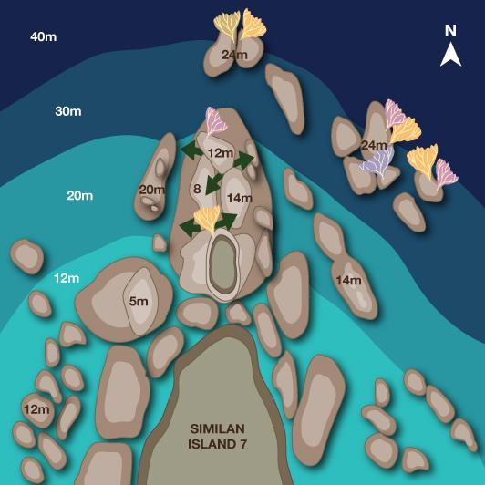 Deep Six - Deep Six Illustrated Map