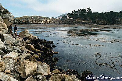 Whalers Cove (Point Lobos) - Life's a Beach