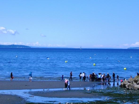 Edmonds Underwater Park (Bruce Higgins UW trails) - Edmonds Underwater Park