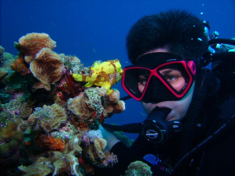 Bonaire - Calabas Reef