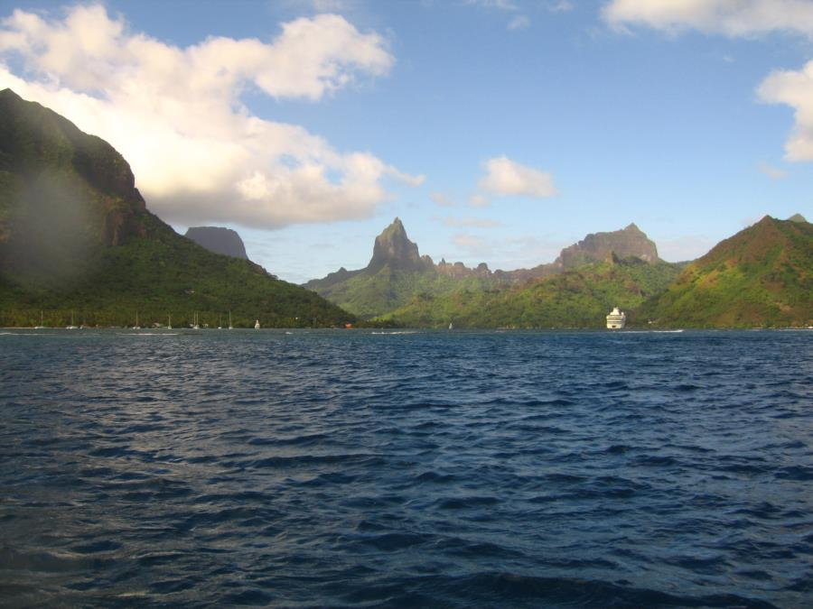 Moorea, diving from Paul Gauguin