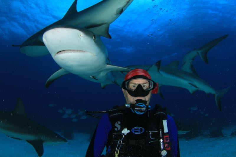 Shark Adventure, Bahamas, Oct 7, 2011