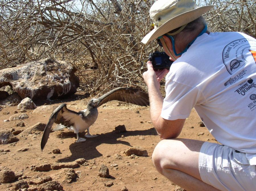 Me photographing a Booby, Galapagos