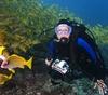 Laura diving