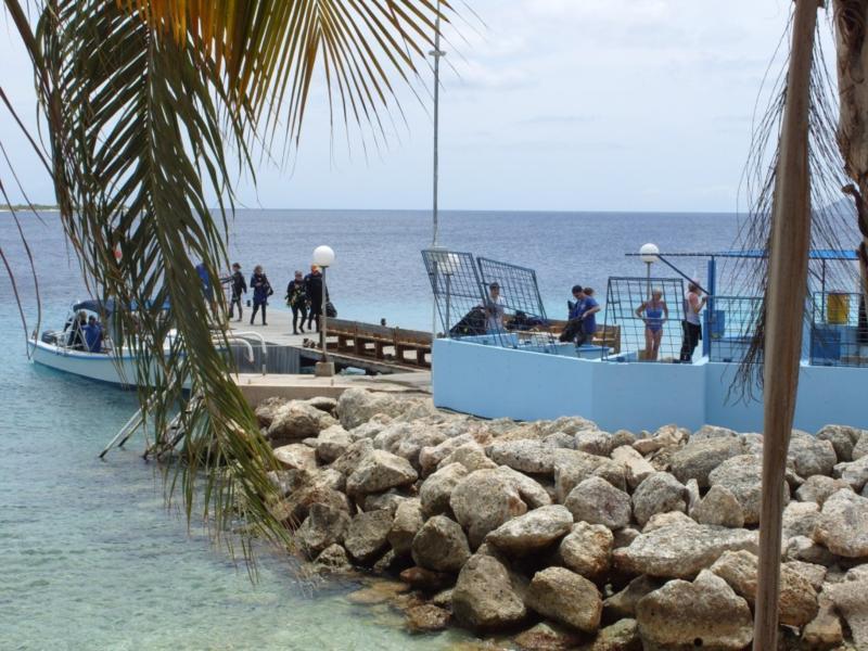 Bonaire Dive & Adventure 2010