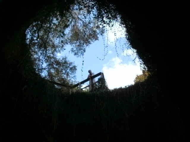 Devil's Den in Florida