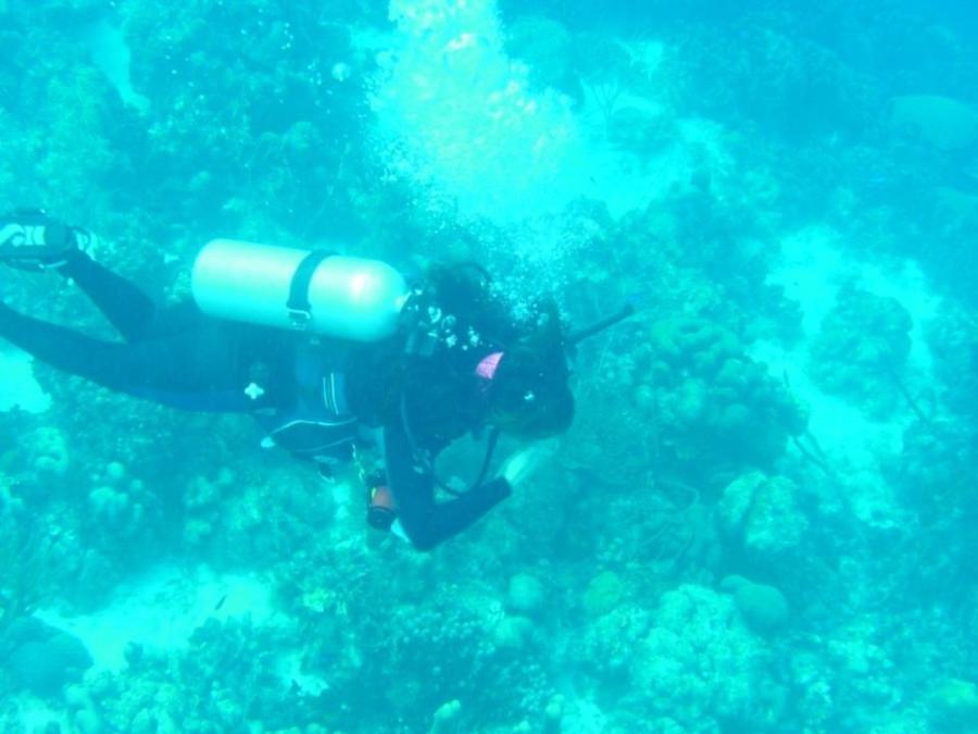 Photo uploaded by oceanfloor (image.jpg)