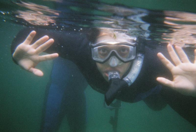 Snorkeling at KP Hole/Manatee's
