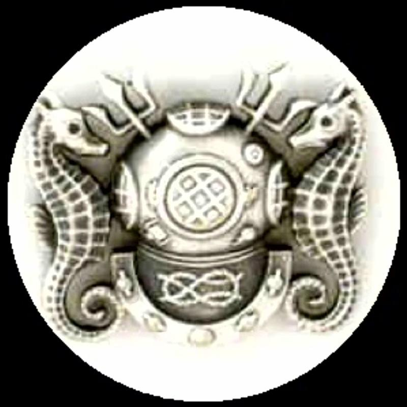 divemaster logo