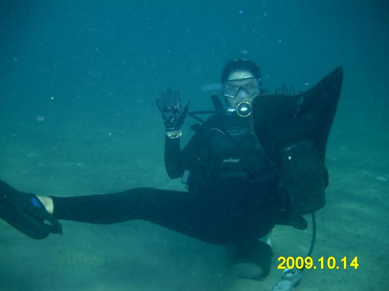 Dive Buddy (Jo)