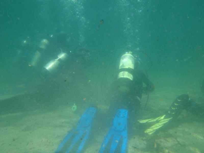 Students on a Cert dive in the Pond